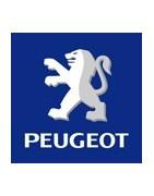 ricambi auto Peugeot teamtuning,